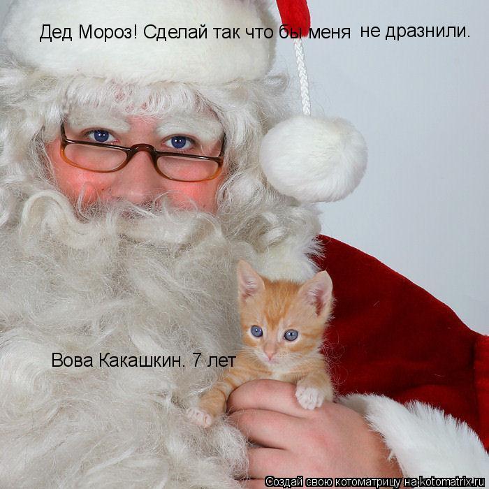 Котоматрица: Дед Мороз! Сделай так что бы меня   не дразнили. Вова Какашкин. 7 лет