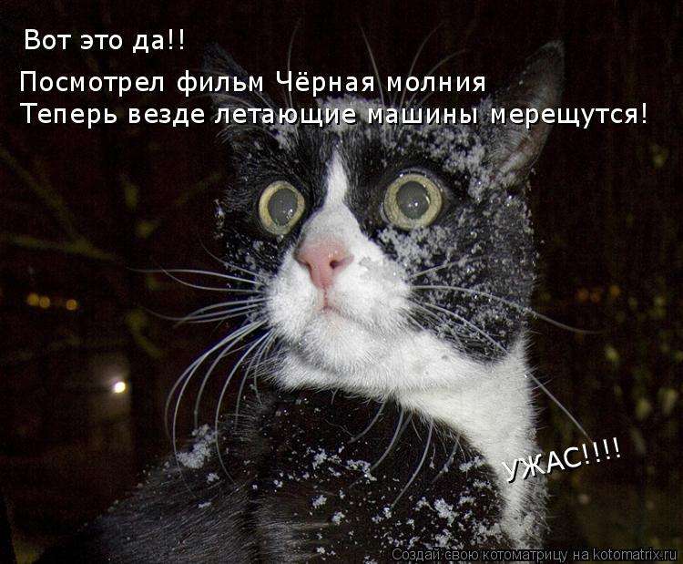 Котоматрица: Вот это да!! Посмотрел фильм Чёрная молния  Теперь везде летающие машины мерещутся! УЖАС!!!!