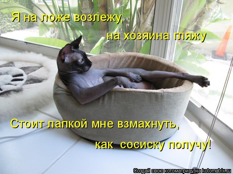 Котоматрица: Я на ложе возлежу, на хозяина гляжу Стоит лапкой мне взмахнуть, как  сосиску получу!