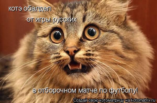 Котоматрица: котэ обалдел  от игры русских  в отборочном матче по футболу!