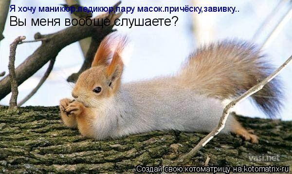 Котоматрица: Я хочу маникюр.педикюр,пару масок.причёску,завивку.. Вы меня вообще слушаете?