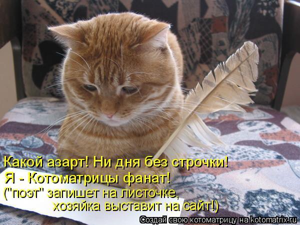 """Котоматрица: Какой азарт! Ни дня без строчки! Я - Котоматрицы фанат! (""""поэт"""" запишет на листочке, хозяйка выставит на сайт!)"""