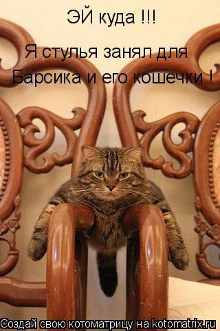 Котоматрица: ЭЙ куда !!! Я стулья занял для Барсика и его кошечки !