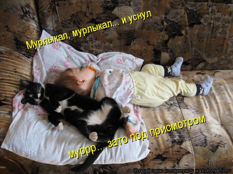 Котоматрица: Мурлыкал, мурлыкал... и уснул муррр... зато под присмотром