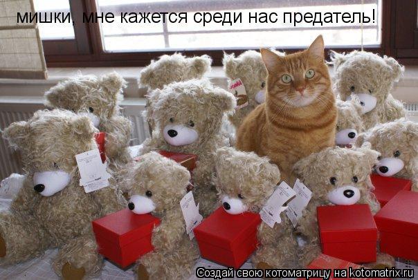 Котоматрица: мишки, мне кажется среди нас предатель!