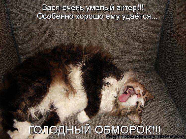 Котоматрица: Вася-очень умелый актер!!! Особенно хорошо ему удаётся... ГОЛОДНЫЙ ОБМОРОК!!!