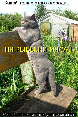 http://kotomatrix.ru/images/lolz/2010/11/05/727903.jpg