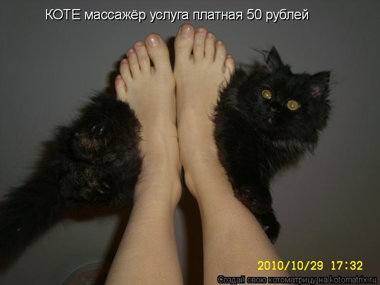 Котоматрица: КОТЕ массажёр услуга платная 50 рублей
