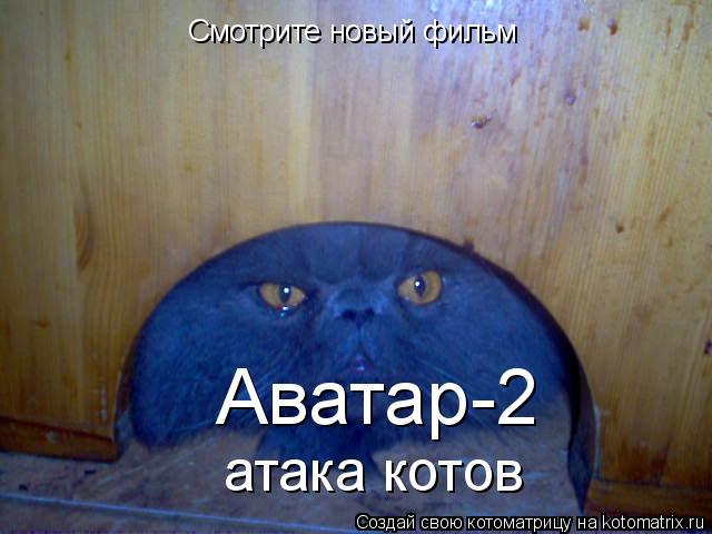 Котоматрица: Смотрите новый фильм Аватар-2 атака котов