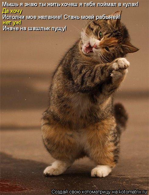Котоматрица: Мышь я знаю ты жить хочеш я тебя поймал в кулак! Да хочу Исполни мое желание! Стань моей рабыней! нет уж! Иначе на шашлык пущу!