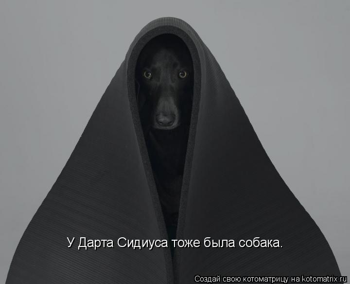 Котоматрица: У Дарта Сидиуса тоже была собака.