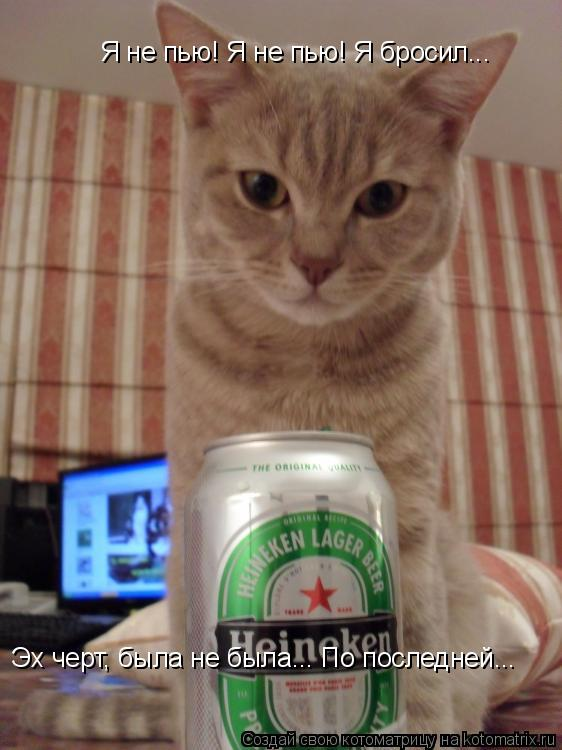 Котоматрица: Я не пью! Я не пью! Я бросил... Эх черт, была не была... По последней...