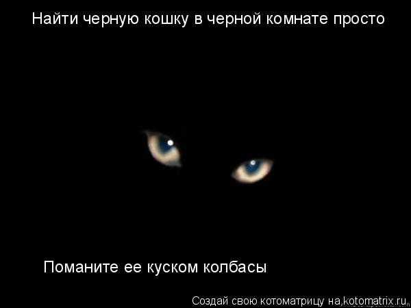 Котоматрица: Найти черную кошку в черной комнате просто Поманите ее куском колбасы