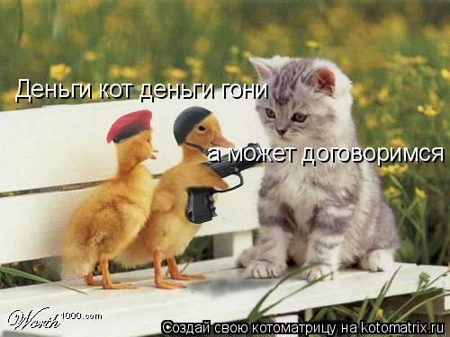 Котоматрица: Деньги кот деньги гони а может договоримся