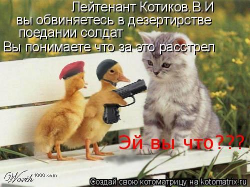 Котоматрица: Лейтенант Котиков.В.И вы обвиняетесь в дезертирстве поедании солдат Вы понимаете что за это расстрел Эй вы что???