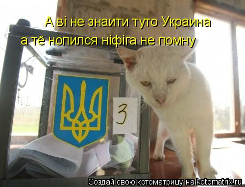 Котоматрица: А вi не знаити туто Украина а тё нопился нiфiга не помну