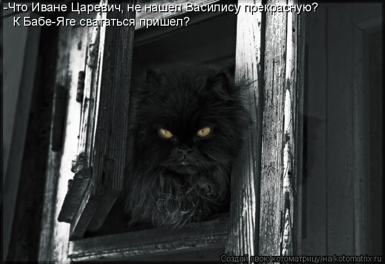 Котоматрица: -Что Иване Царевич, не нашел Василису прекрасную? К Бабе-Яге свататься пришел?