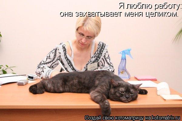 Котоматрица: Я люблю работу: она захватывает меня целиком.  она захватывает меня целиком.