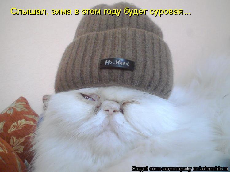 Котоматрица: Слышал, зима в этом году будет суровая...