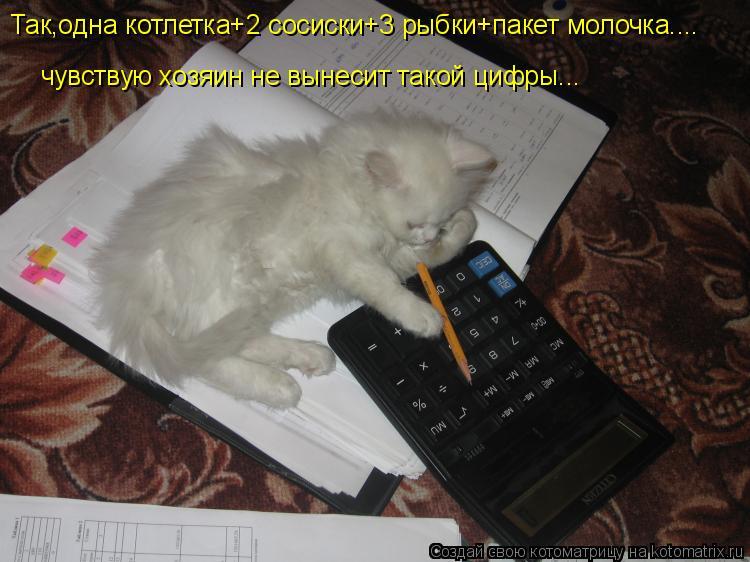 Котоматрица: чувствую хозяин не вынесит такой цифры... Так,одна котлетка+2 сосиски+3 рыбки+пакет молочка....