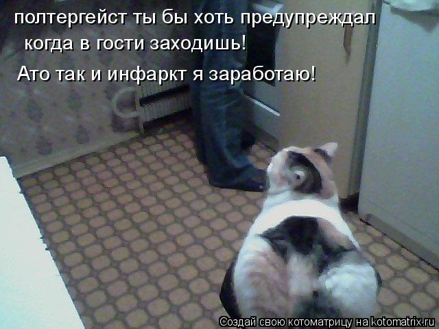 Котоматрица: полтергейст ты бы хоть предупреждал  когда в гости заходишь!  Ато так и инфаркт я заработаю!