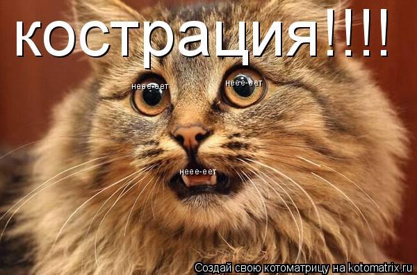 Котоматрица: кострация!!!! неее-еет неее-еет неее-еет