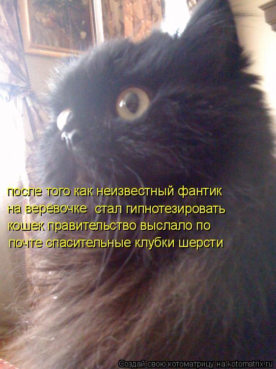 Котоматрица: на верёвочке  стал гипнотезировать  после того как неизвестный фантик  кошек правительство выслало по почте спасительные клубки шерсти