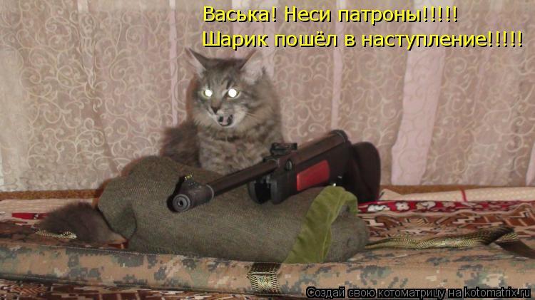 Котоматрица: Шарик пошёл в наступление!!!!! Васька! Неси патроны!!!!!