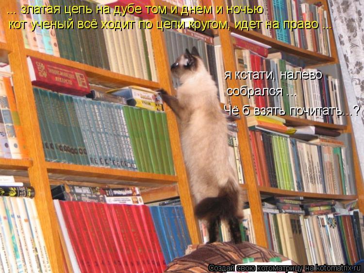 Котоматрица: ... златая цепь на дубе том и днем и ночью кот ученый всё ходит по цепи кругом, идет на право ... я кстати, налево  собрался ... Чё б взять почитать