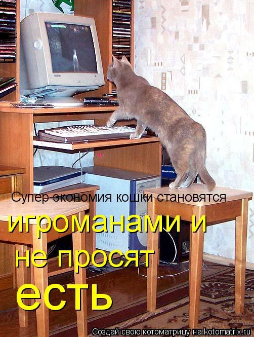 Котоматрица: Супер экономия кошки становятся игроманами и  не просят  есть