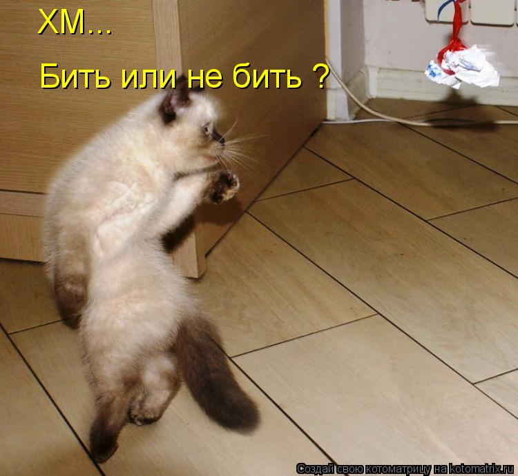 Котоматрица: ХМ... Бить или не бить ?
