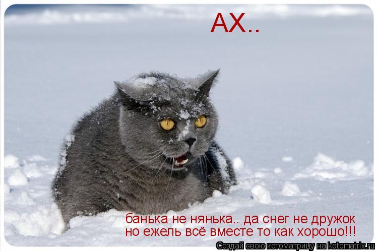 Котоматрица: АХ..  банька не нянька.. да снег не дружок но ежель всё вместе то как хорошо!!!