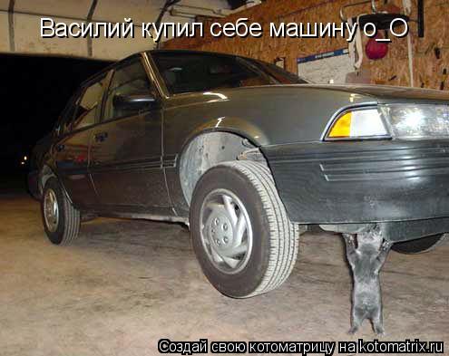 Котоматрица: Василий купил себе машину о_О