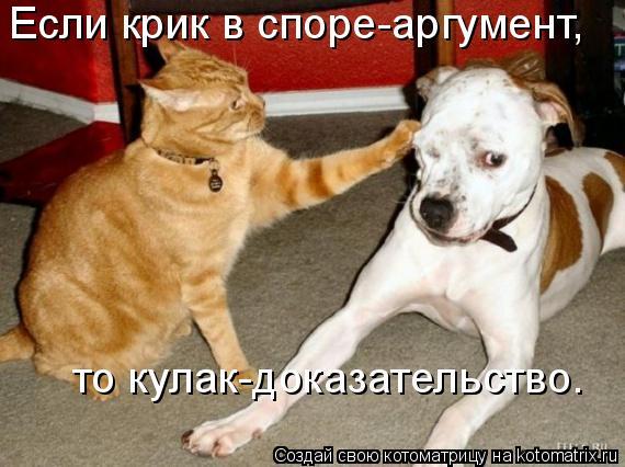 Котоматрица: Если крик в споре-аргумент, то кулак-доказательство.