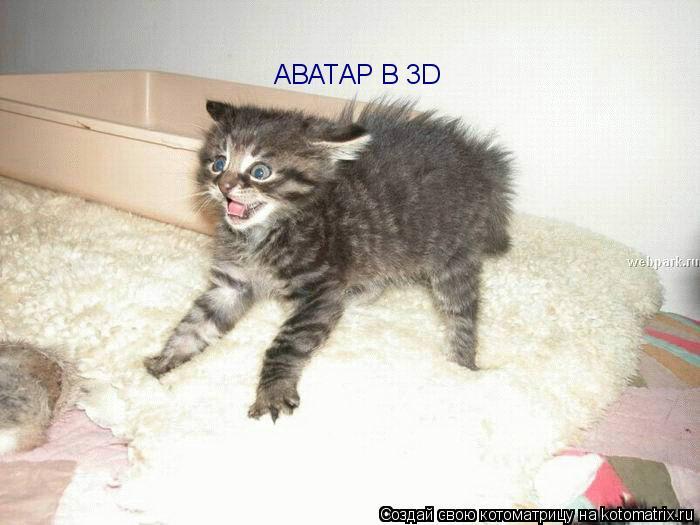 Котоматрица: АВАТАР В 3D