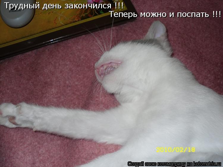 Котоматрица: Трудный день закончился !!!  Теперь можно и поспать !!!
