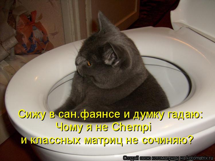 Котоматрица: Сижу в сан.фаянсе и думку гадаю: Чому я не Chempi и классных матриц не сочиняю?