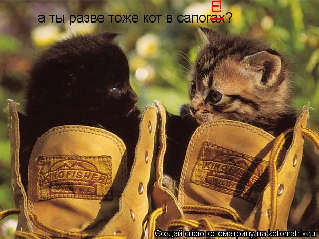 Котоматрица: а ты разве тоже кот в сапогах? _ Е !