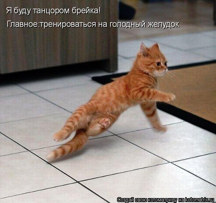 Котоматрица: Я буду танцором брейка! . Главное:тренироваться на голодный желудок