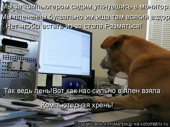 Котоматрица: Мы за компьютером сидим,уткнувшись в монитор. Мы плененны буквально им,ища там всякий вздор. Нет чтобы встать из-за стола.Размяться! Так вед