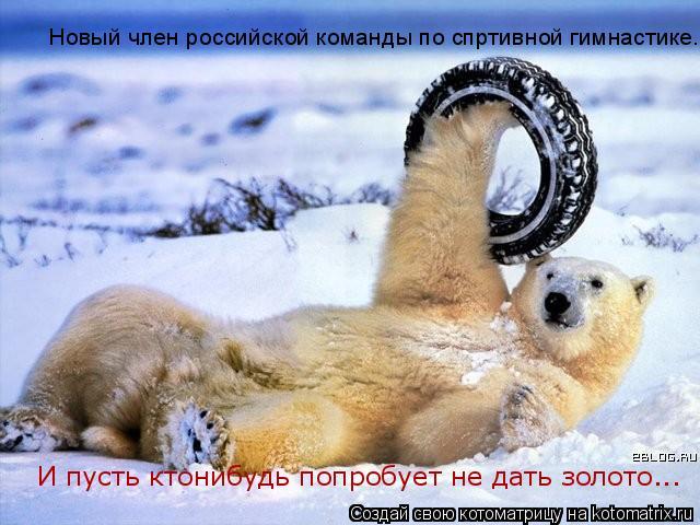 Котоматрица: Новый член российской команды по спртивной гимнастике. И пусть ктонибудь попробует не дать золото...