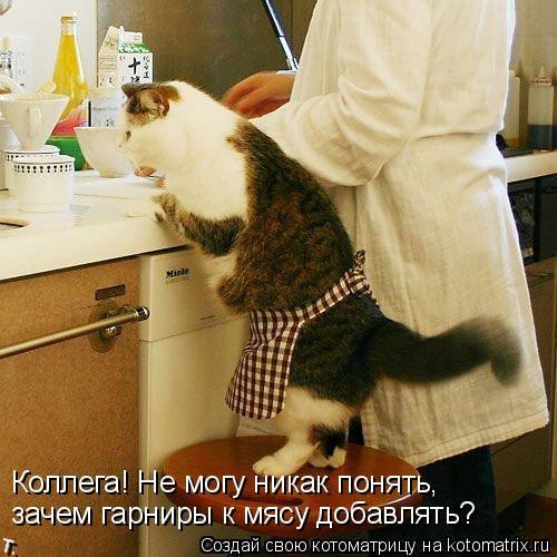 Котоматрица: Коллега! Не могу никак понять, зачем гарниры к мясу добавлять?