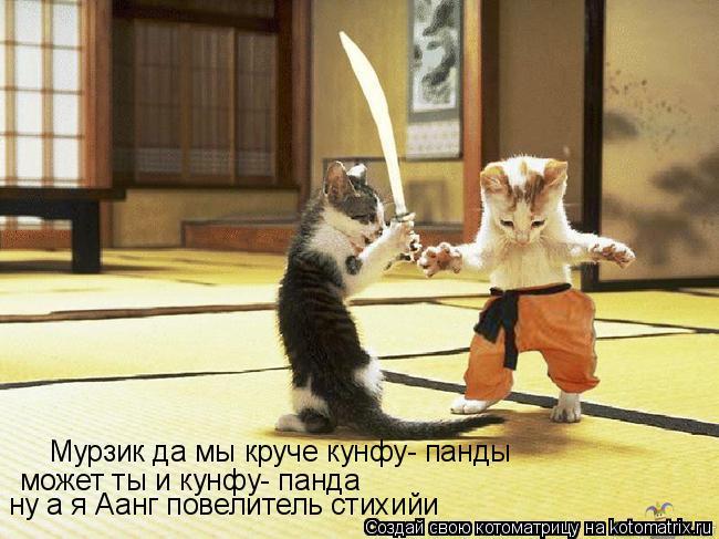 Котоматрица: Мурзик да мы круче кунфу- панды может ты и кунфу- панда ну а я Аанг повелитель стихийи