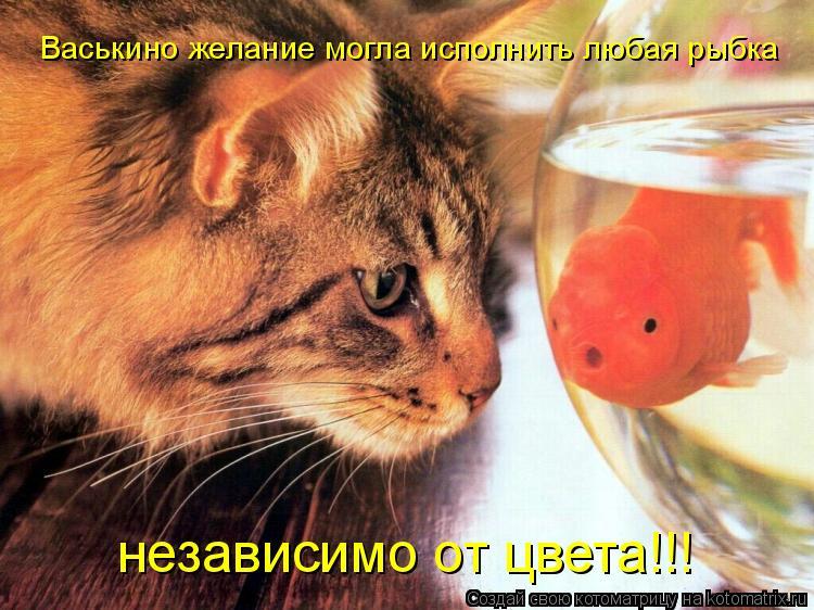 Котоматрица: Васькино желание могла исполнить любая рыбка независимо от цвета!!!
