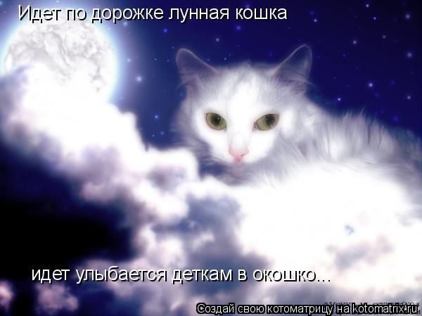 Котоматрица: Идет по дорожке лунная кошка идет улыбается деткам в окошко...