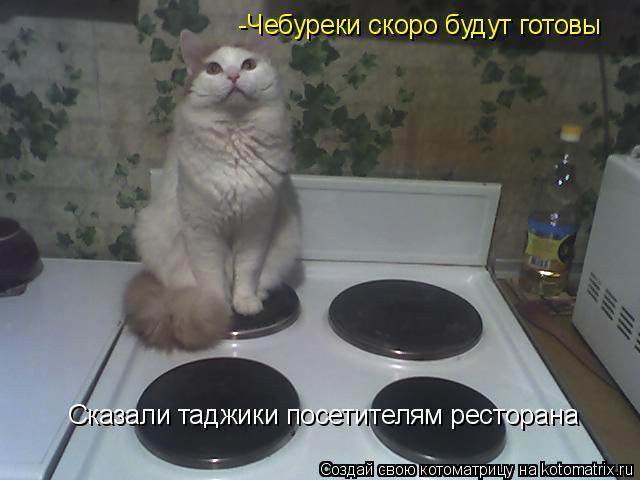 Котоматрица: -Чебуреки скоро будут готовы Сказали таджики посетителям ресторана