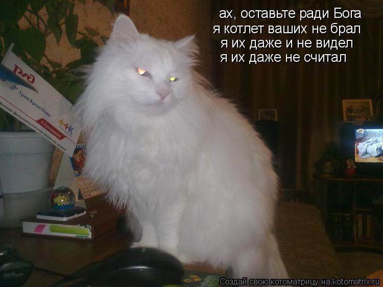 Котоматрица: ах, оставьте ради Бога я котлет ваших не брал я их даже и не видел я их даже не считал