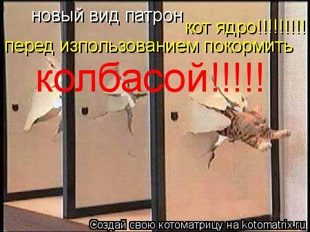 Котоматрица: новый вид патрон  перед изпользованием покормить колбасой!!!!! кот ядро!!!!!!!!!