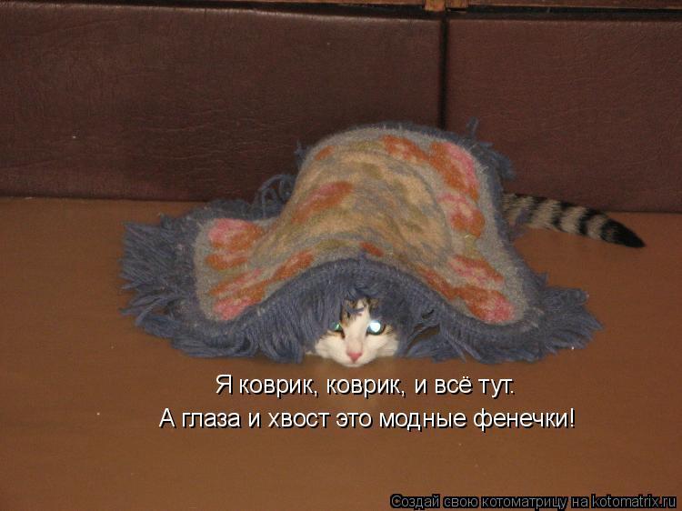 Котоматрица: Я коврик, коврик, и всё тут. А глаза и хвост это модные фенечки!