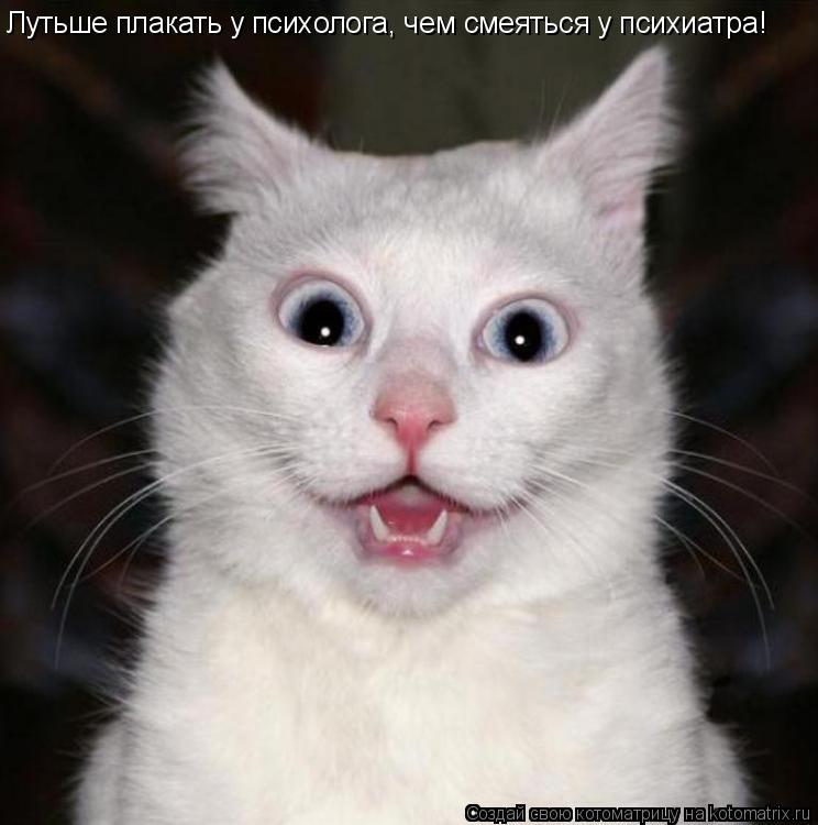 Котоматрица: Лутьше плакать у психолога, чем смеяться у психиатра!